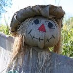 cute scarecrow